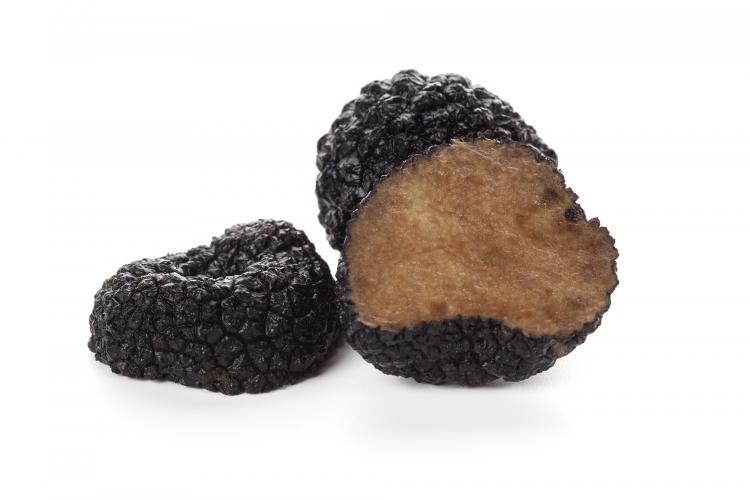 Chinese black truffle